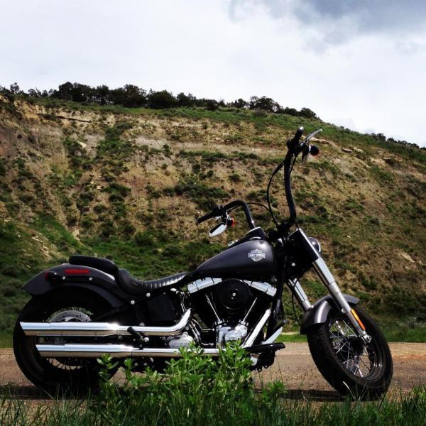 Softail Slim Gangster Apes Harley Davidson Forums
