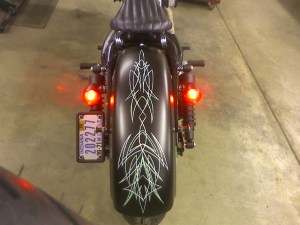Need adviseFender Chop & Tail Light Removal  Harley Davidson Forums
