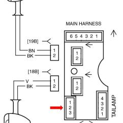2003 Softail Wiring Diagram Labled Of The Eye Iron Xl 2009 Auto Electrical Harley Sportster Rear Fender