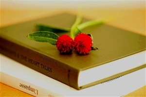 Books Hd Wallpapers Images Pictures Photos Download