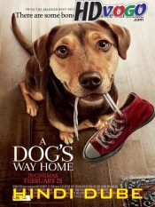 A Dog's Way Home 2019 in HD Hindi Full Movie