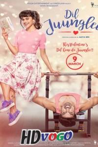 Dil Juunglee 2018 in HD Hindi  Full Movie