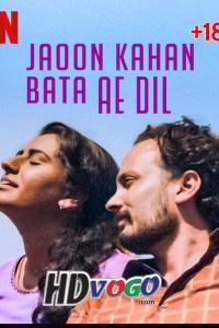 Jaoon Kahan Bata Ae Dil 2019 in HD Hindi Full Movie