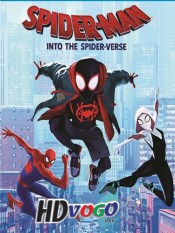 Spider Man Into the Spider Verse 2018 in HD English Full Movie