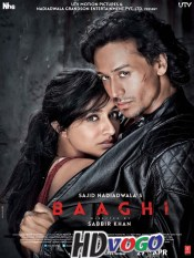 Baaghi 2016 in HD Hindi Full Movie