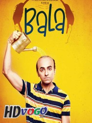 Bala 2019 in HD Hindi Full MOvie Watch Online Free