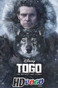 Togo 2019 in HD English Full Movie