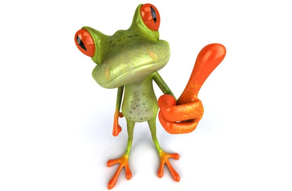3d Funny Frog Animals Wallpapers Hd