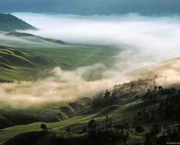 Lovely morning in the Jemplang hills Bromo