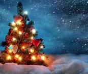 hd christmas tree