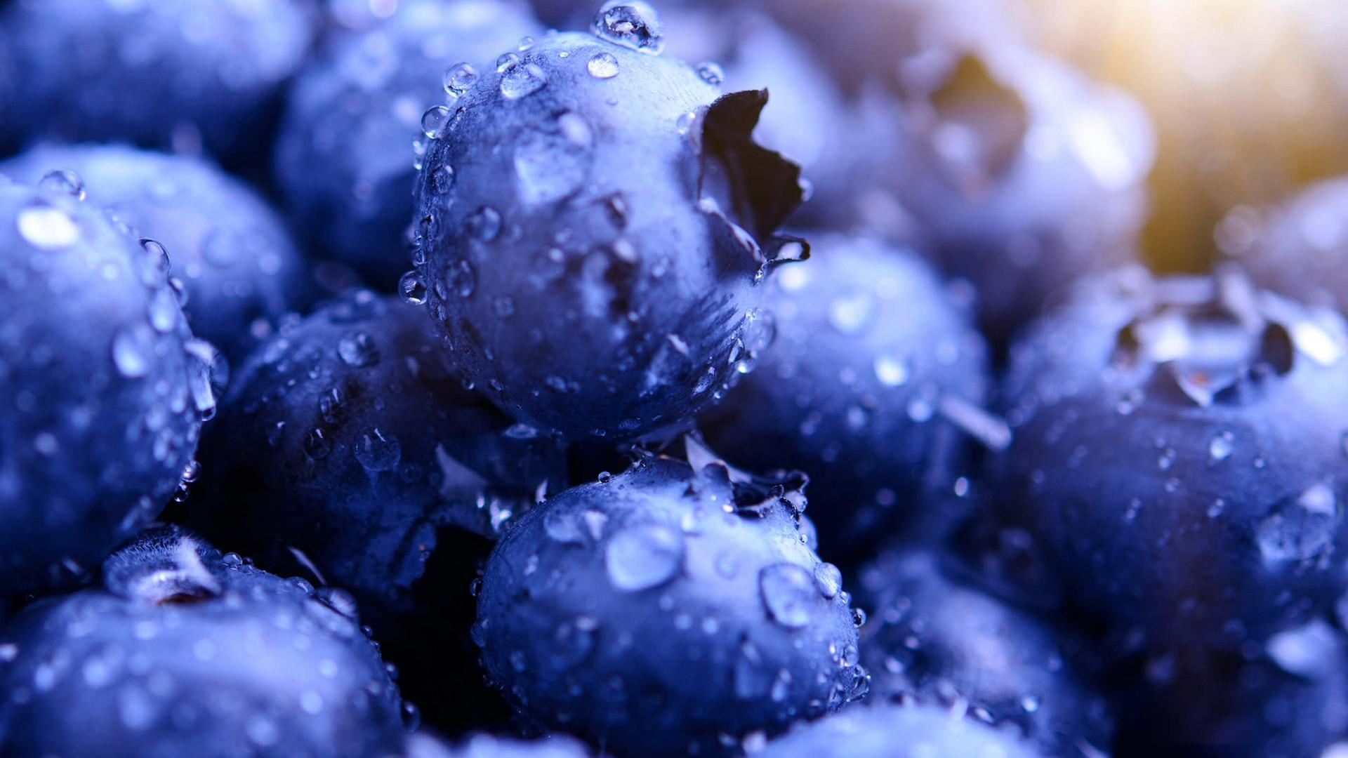 Cute Kitchen Wallpaper Blueberries Hd Wallpapers Hd Wallpapers Id 22914