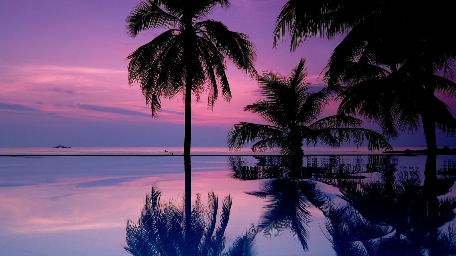 The great collection of purple aesthetic hd wallpapers for desktop, laptop and mobiles. Coconut Trees Reflection On Water Under Purple Cloudy Sky