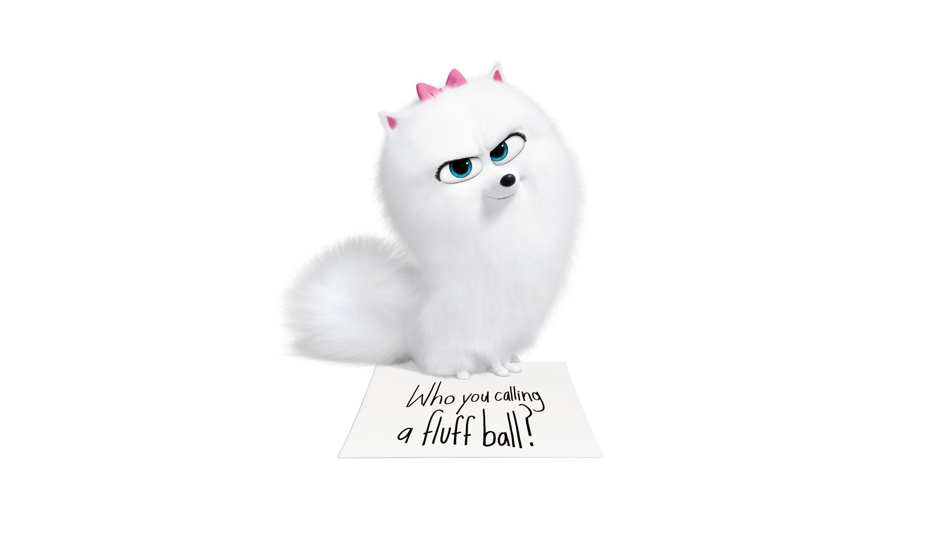 Cute Rabbit Wallpapers For Desktop Cute Gidget In The Secret Life Of Pets 2 4k 8k Wallpapers