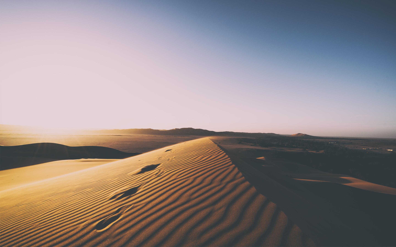 3d Sea Beach Wallpaper Desert Sand Dunes 5k Wallpapers Hd Wallpapers Id 21903