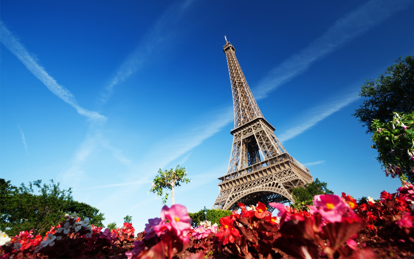 Cute Flowers And Birds Wallpapers Eiffel Tower Paris France Wallpapers Hd Wallpapers Id