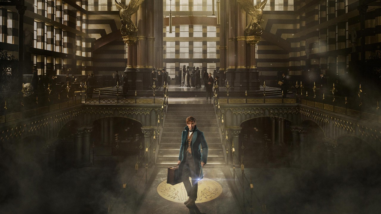 Windows Anime Girls Wallpapers Fantastic Beasts And Where To Find Them 2016 Wallpapers