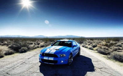 Ford Shelby GT500 Car Wallpapers   HD Wallpapers   ID #10989