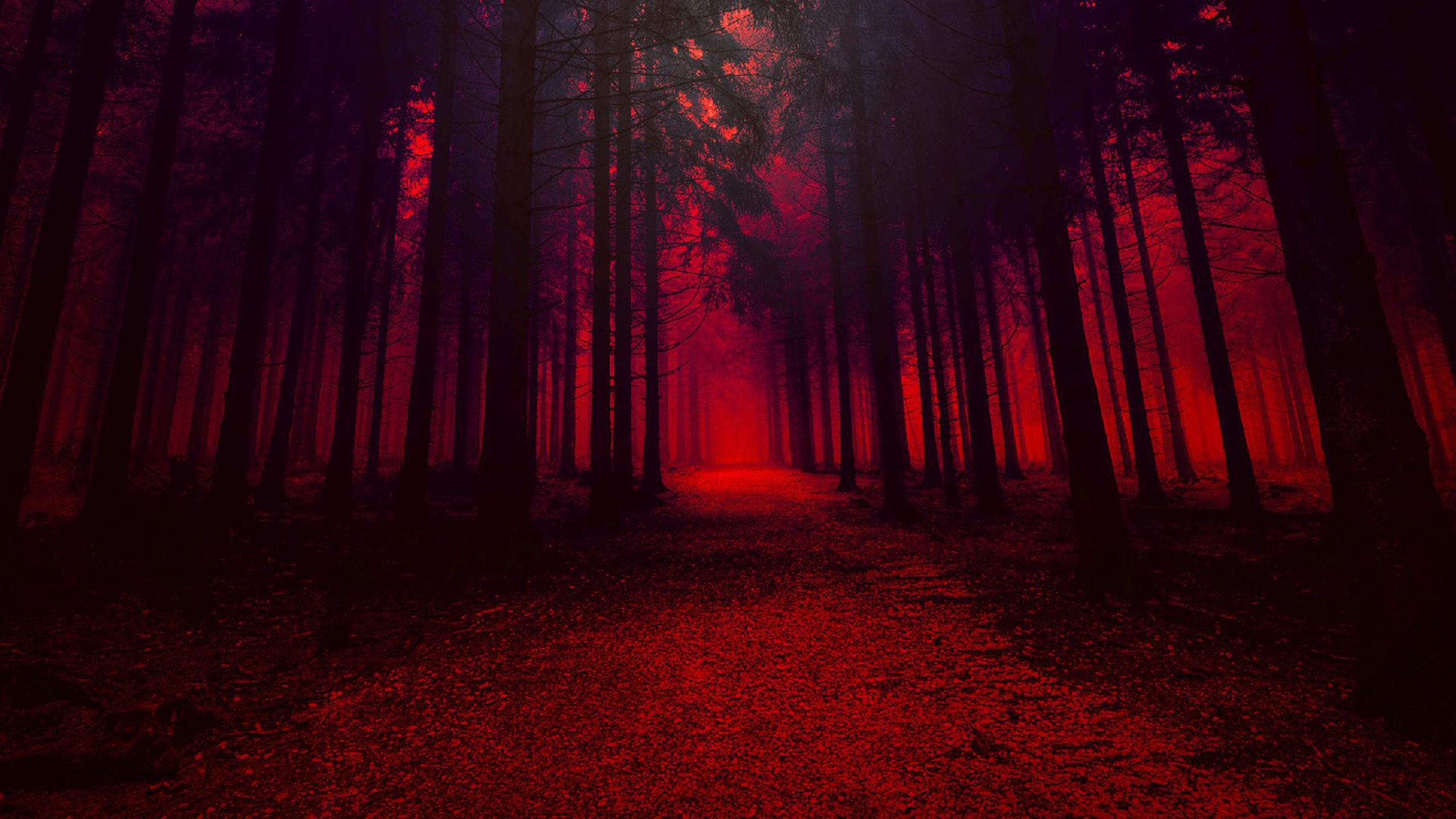We hope you enjoy our growing collection of hd images to use as a background or home screen for your smartphone or computer. Forest With Trees In Red Effect HD Red Aesthetic ...