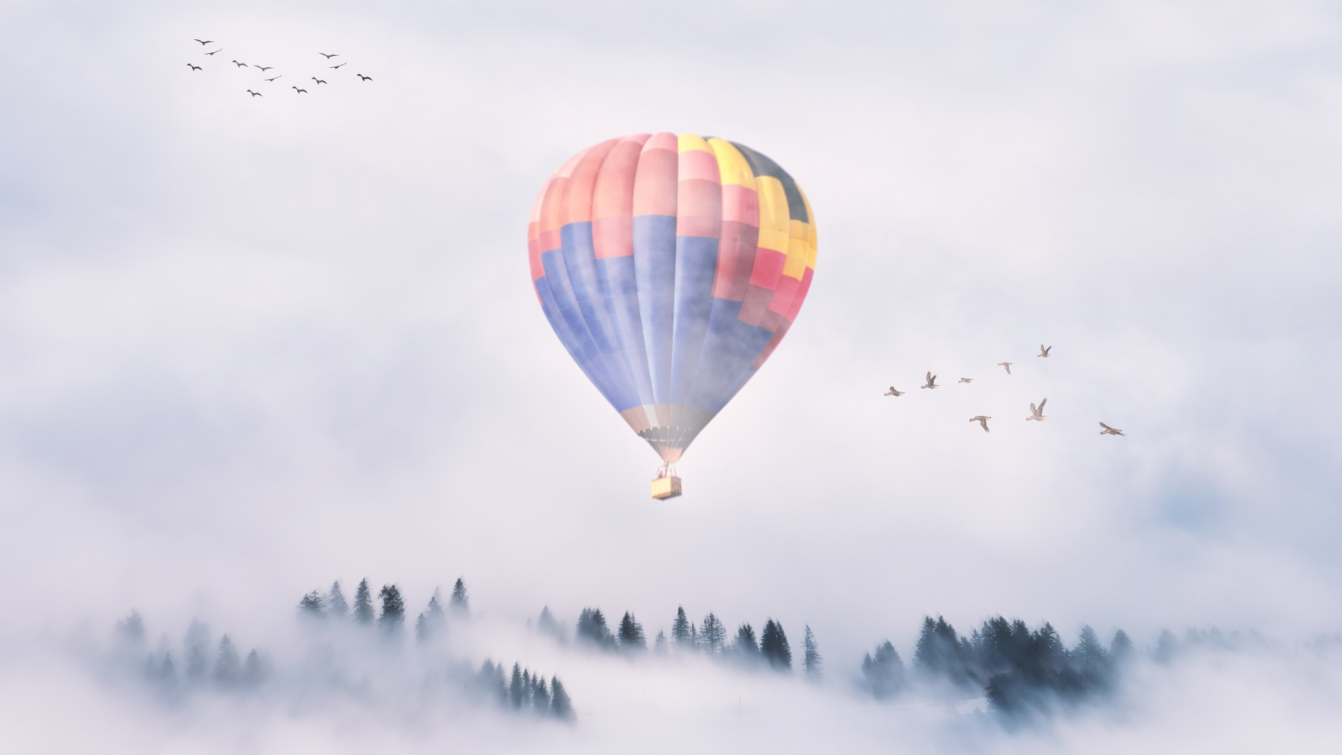 3d Wallpaper For Ipad Pro Hot Air Balloon Mist 4k Wallpapers Hd Wallpapers Id 24985