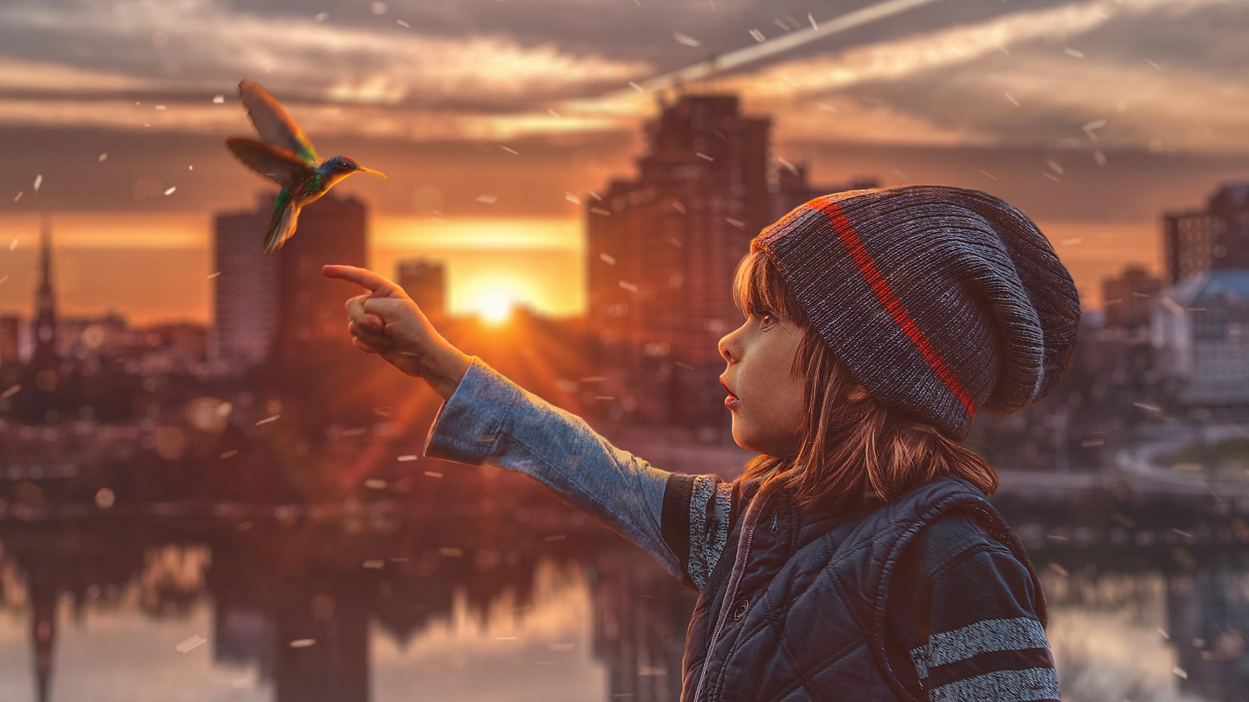 2560x1024 Hd Wallpaper Hummingbird Child Dream Wallpapers Hd Wallpapers Id 28160