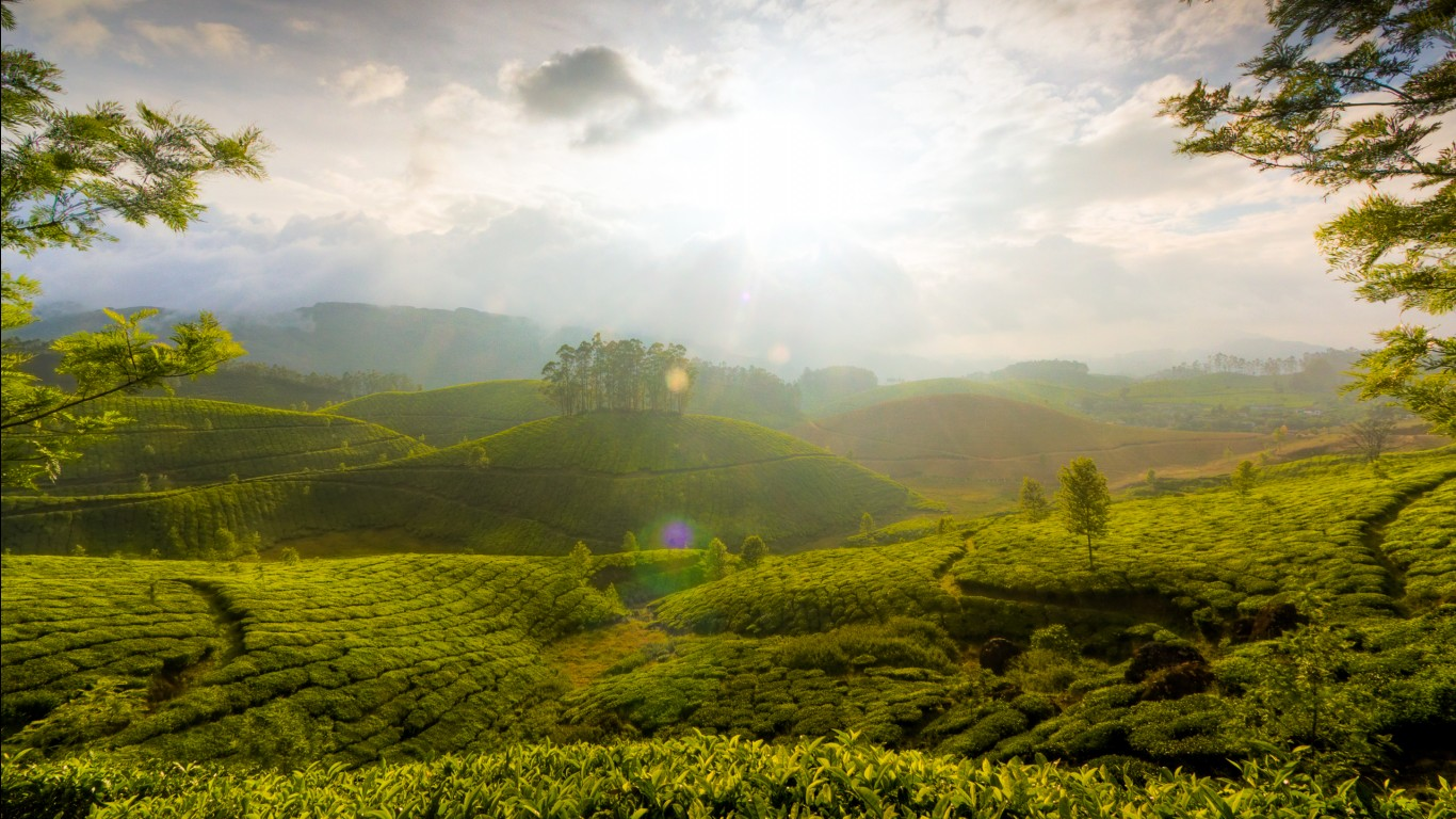 Cute Wallpaper 1440 1080 Munnar Hills Kerala India Wallpapers Hd Wallpapers Id