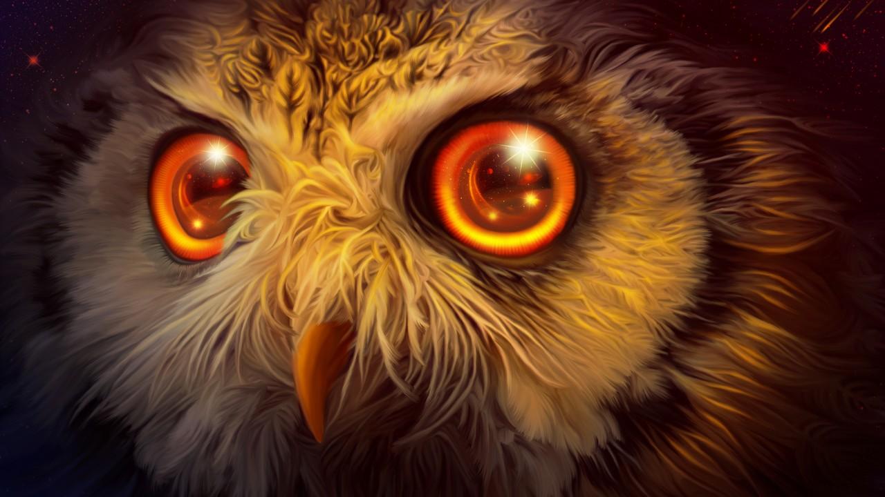 Cute Cartoon Bird Wallpapers Mystic Owl 4k Wallpapers Hd Wallpapers Id 23838