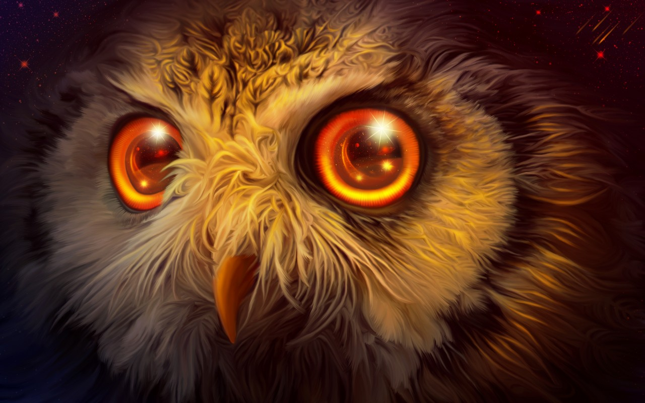 Creative Wallpapers For Iphone X Mystic Owl 4k Wallpapers Hd Wallpapers Id 23838