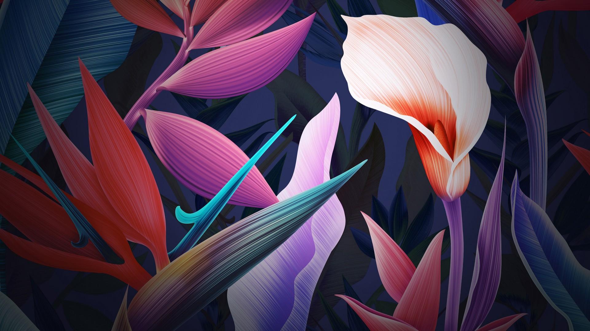 Cute Owl Iphone Wallpaper Neon Flowers Huawei Mate 10 Stock Wallpapers Hd