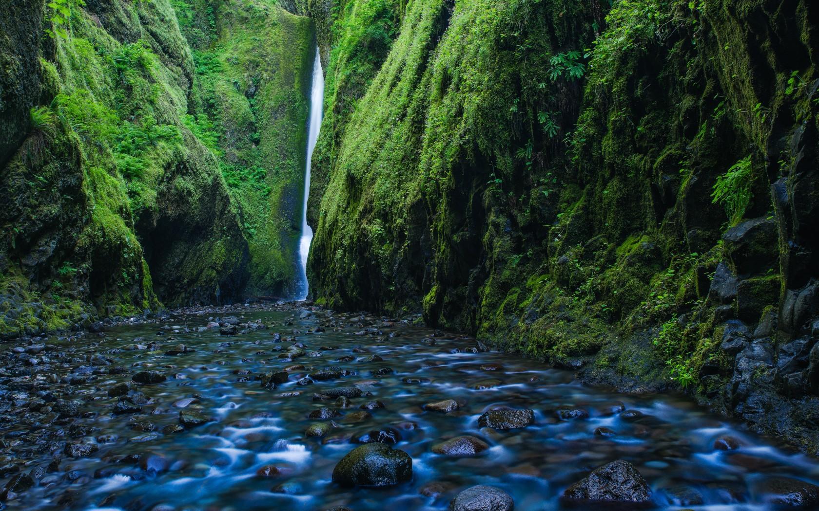 Portland Oregon Fall Had Wallpaper Oneonta Gorge Waterfall Oregon Wallpapers Hd Wallpapers