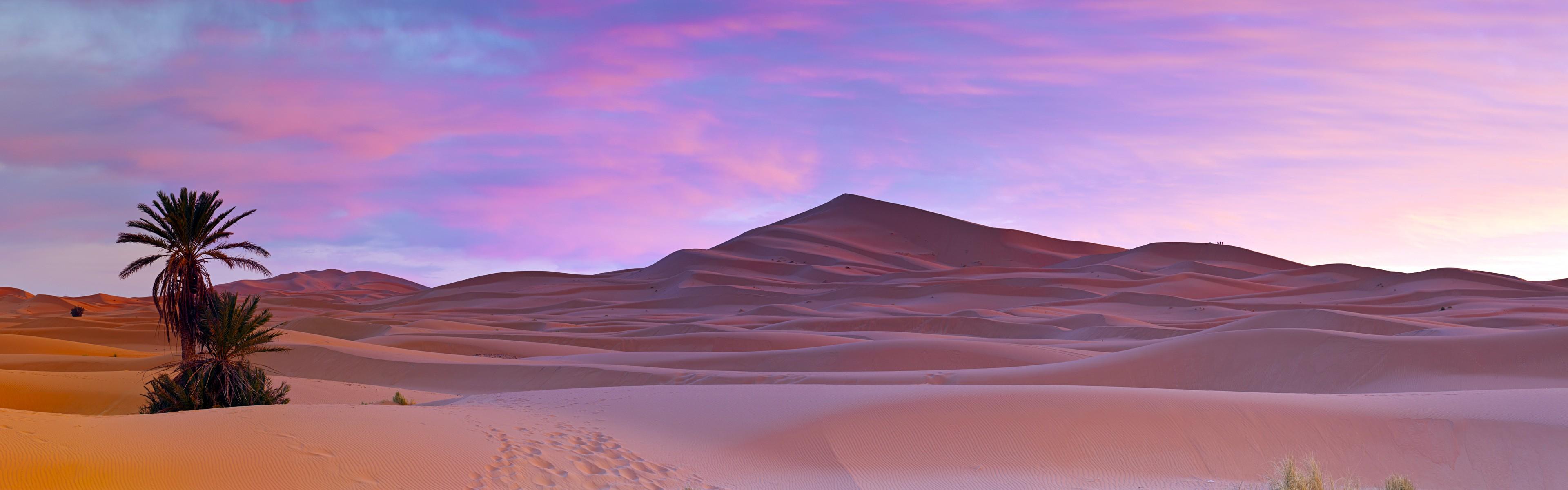 Cute Lock Screen Wallpapers For Ipad Palm Trees Sahara Desert Morocco Wallpapers Hd