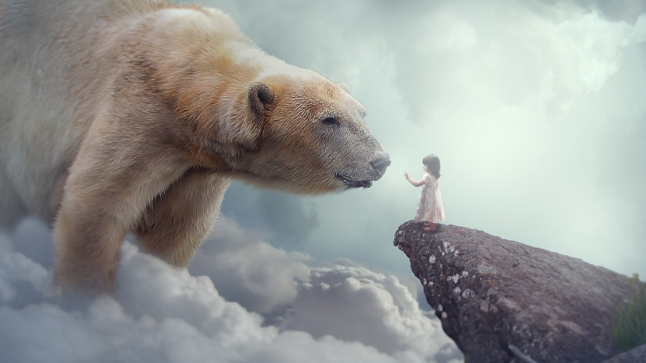 Cute Child Love Wallpaper Download Polar Bear Child Dream Wallpapers Hd Wallpapers Id 25321