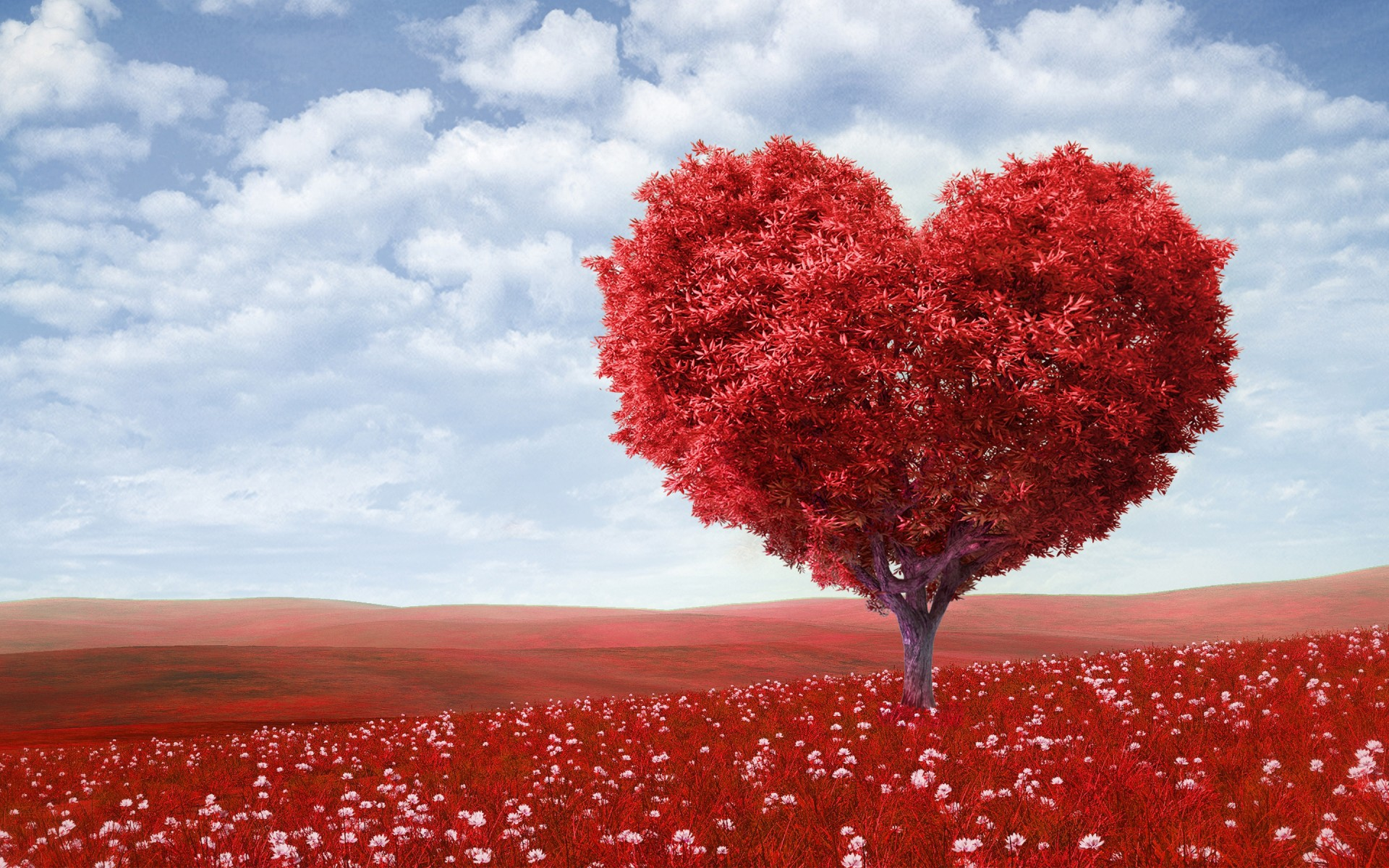Iphone 5 Fall Wallpaper Red Love Heart Tree Wallpapers Hd Wallpapers Id 16776