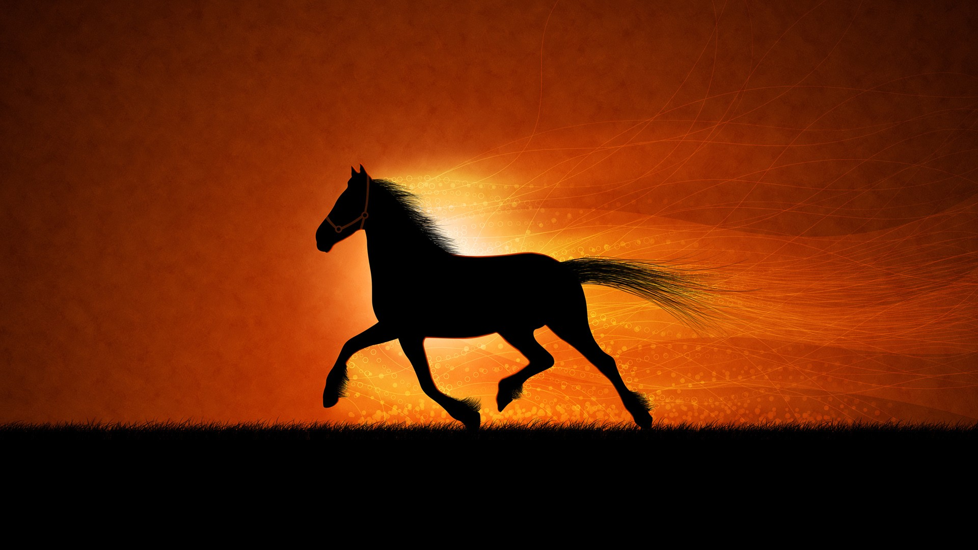 Quote Wallpapers For Iphone 4 Running Horse Wallpapers Hd Wallpapers Id 770