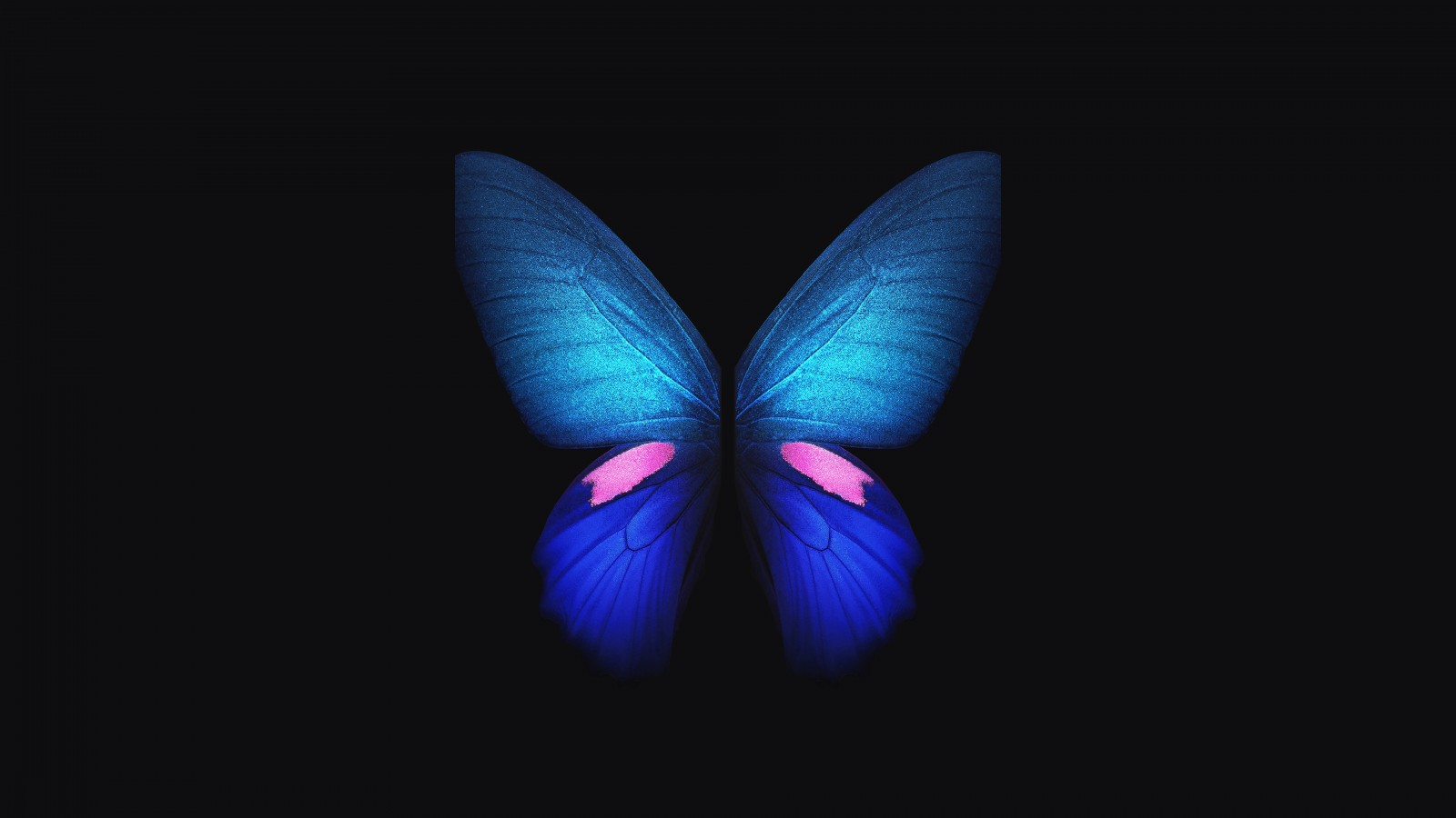 Iphone 5s Wallpaper Galaxy Samsung Galaxy Fold Blue Butterfly 4k Wallpapers Hd
