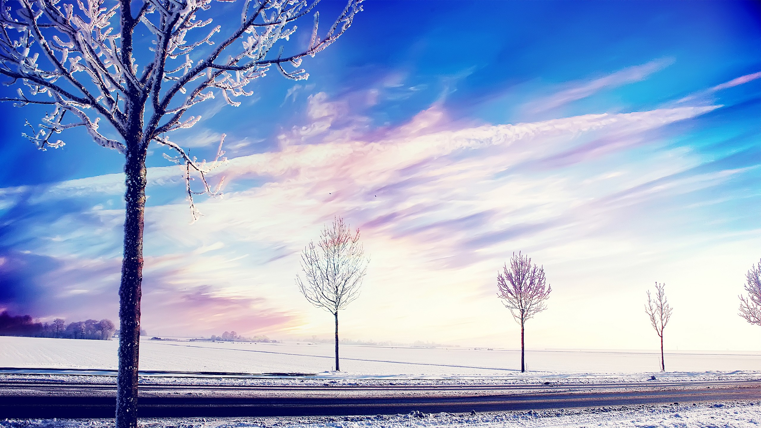 3d Wallpaper Theme For Android Snow Winter Trees Wallpapers Hd Wallpapers Id 14178