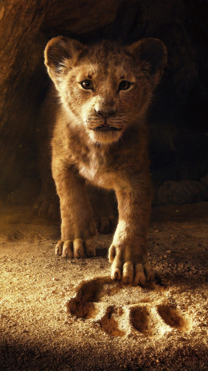 Lion Wallpaper Iphone 6 The Lion King 2019 5k Wallpapers Hd Wallpapers Id 26838