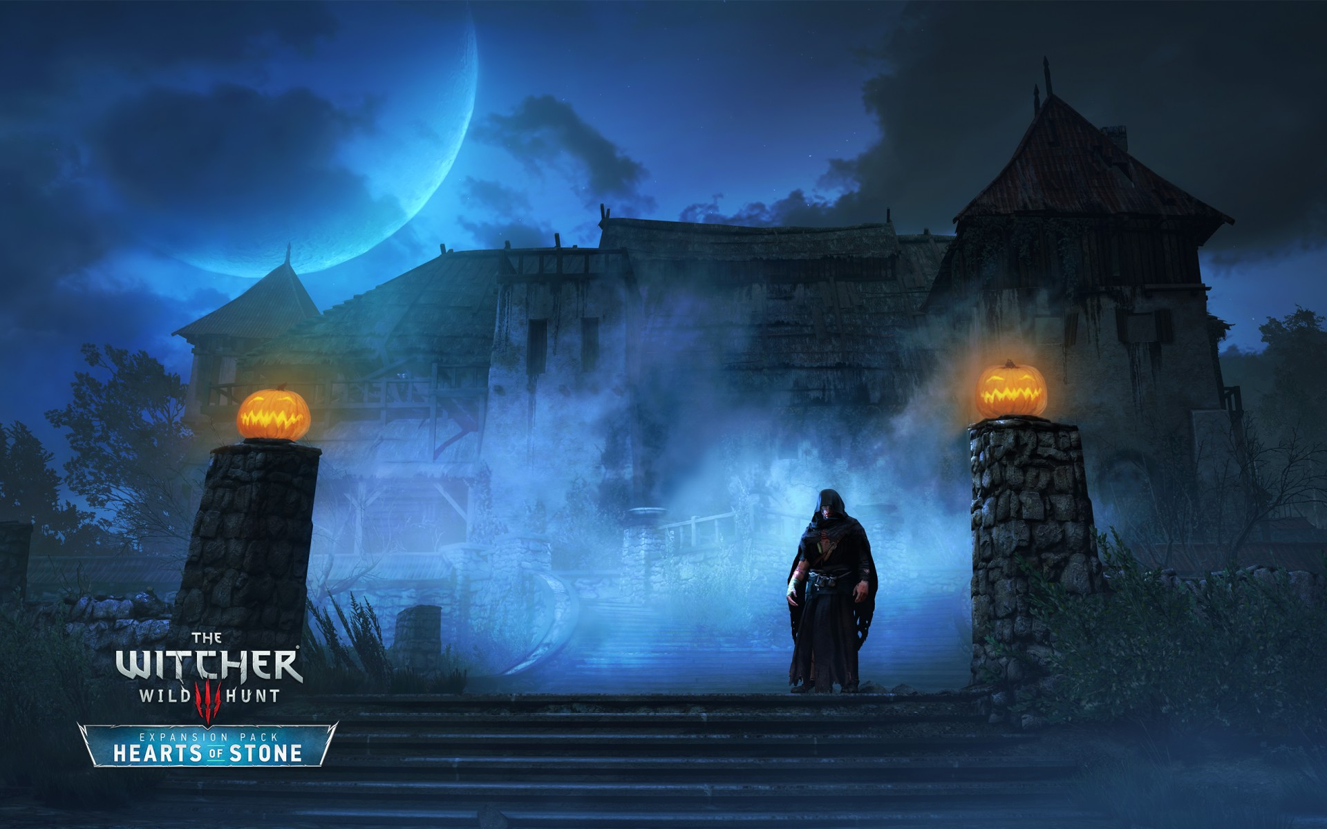 Download 3d Video Wallpaper For Pc The Witcher 3 Wild Hunt Caretaker Wallpapers Hd