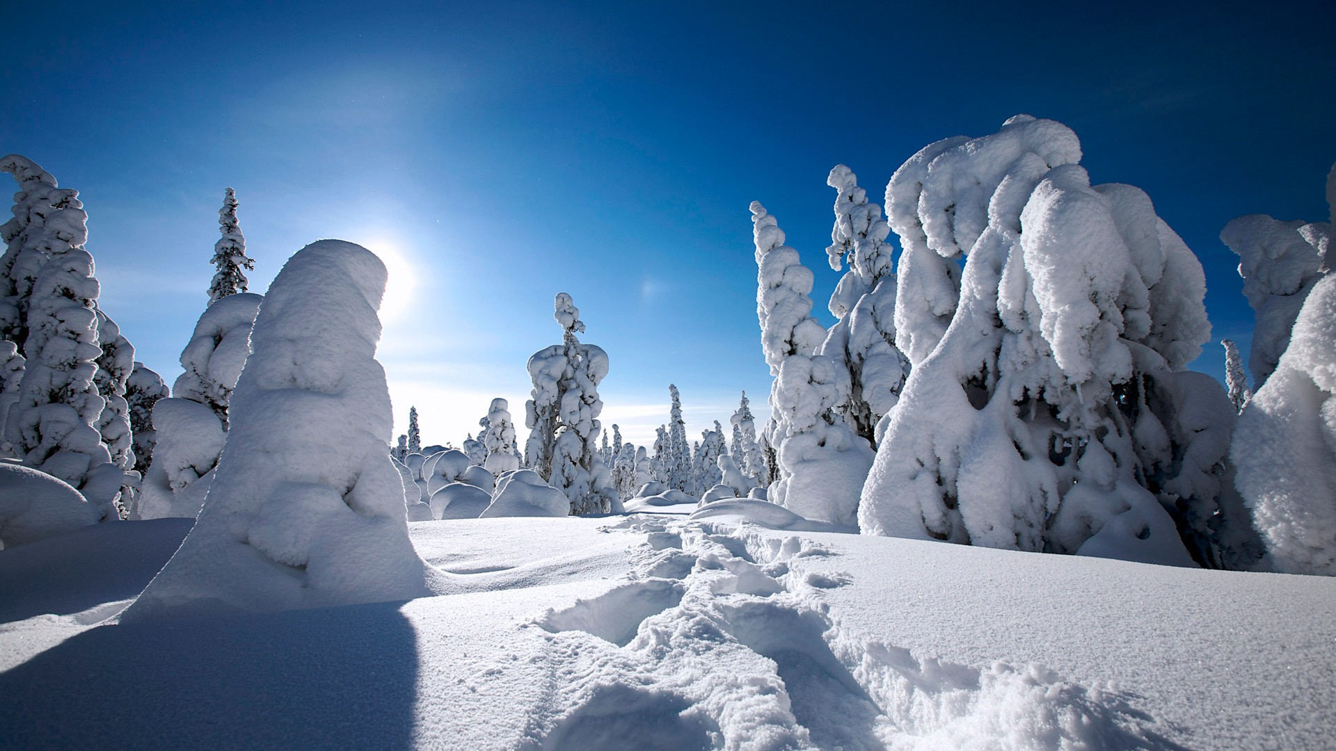 Winter in Finland Wallpapers  HD Wallpapers  ID 9702