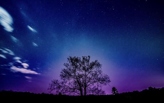 Iphone X Wallpaper Gif Landscape Purple Sunset Landscape 4k 8k Wallpapers Hd Wallpapers