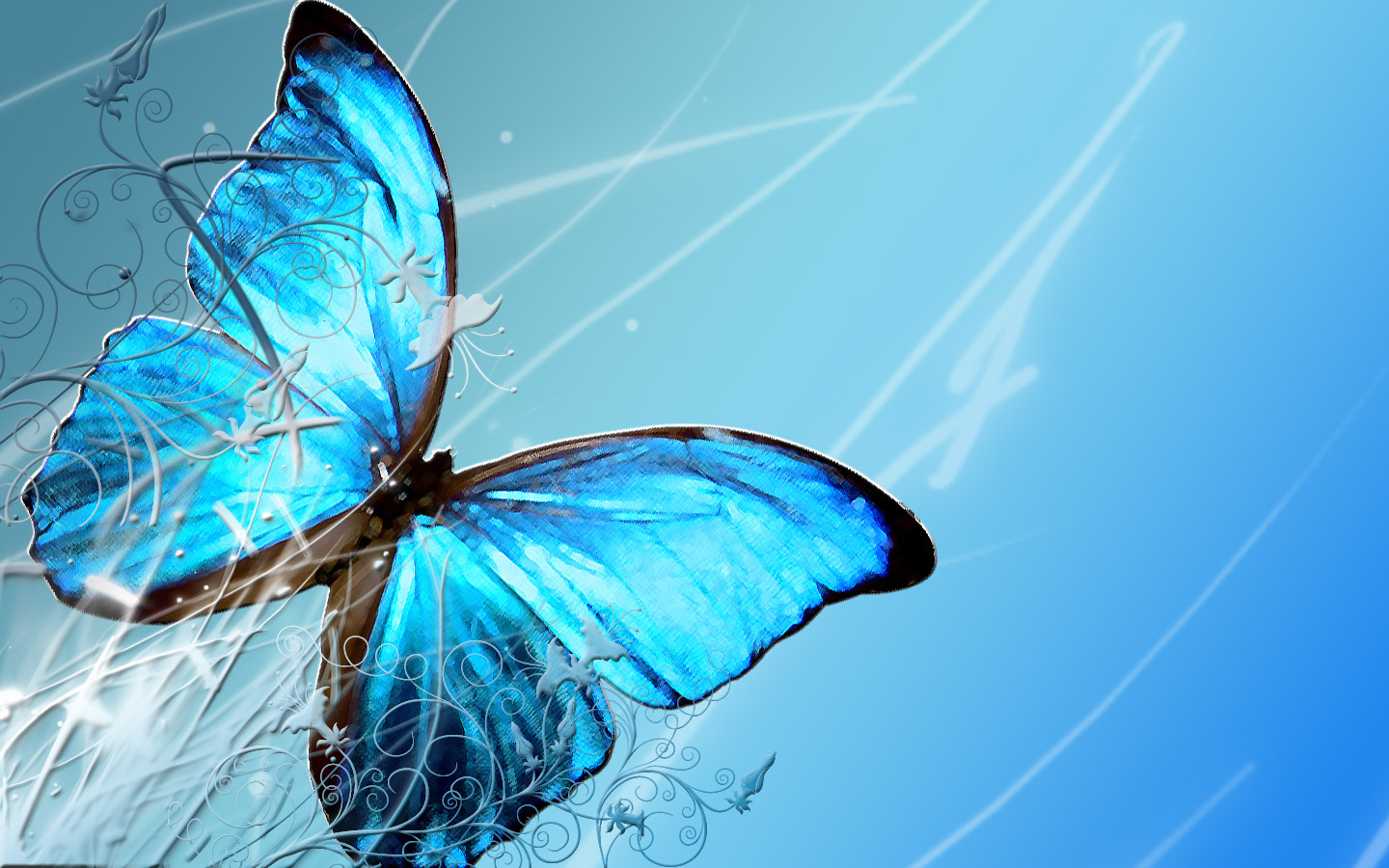 Amazing Islamic Wallpapers With Quotes Butterfly Wallpaper Blue Butterfly Wallpaper 7504