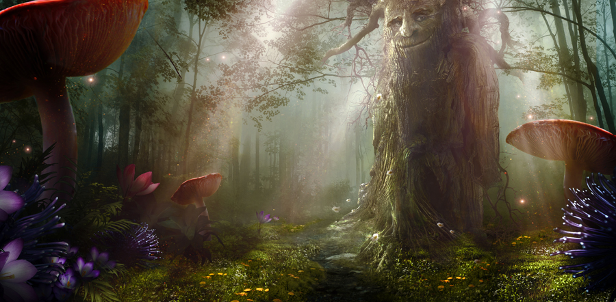 Mystical Creatures In The Fall Wallpaper Enchanted Forest Awesome Natural Enchanted Forest 26404