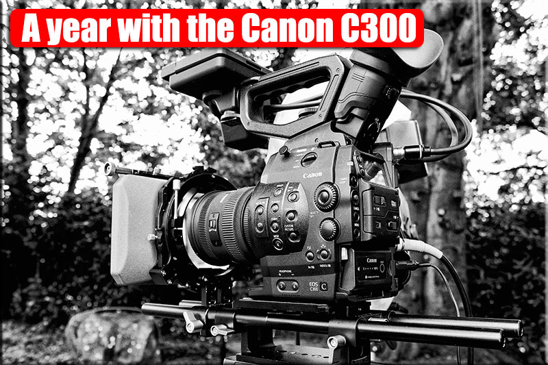 A-year-with-C300