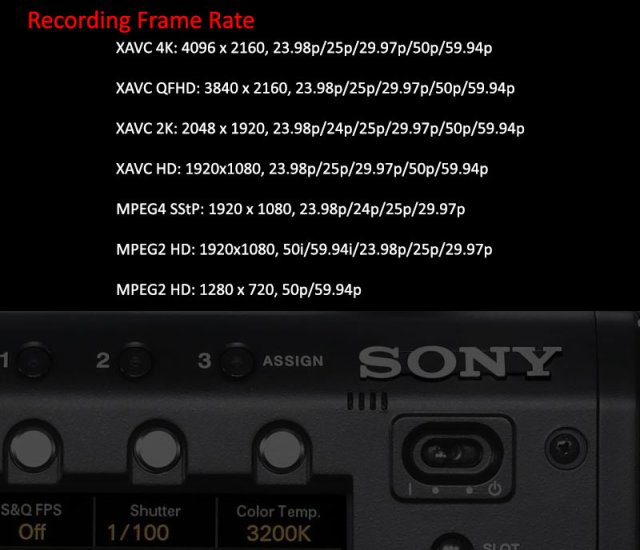 F55-Frame-Rate