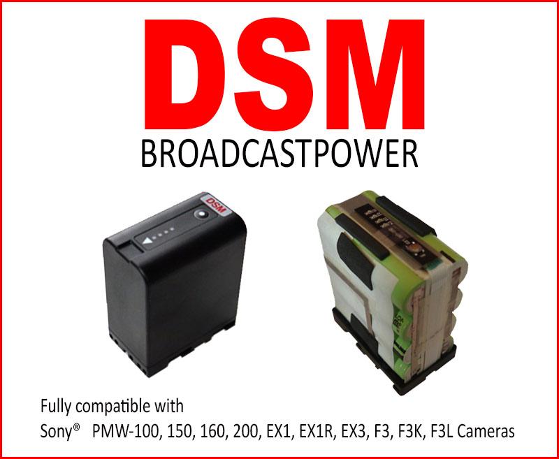DSM-web
