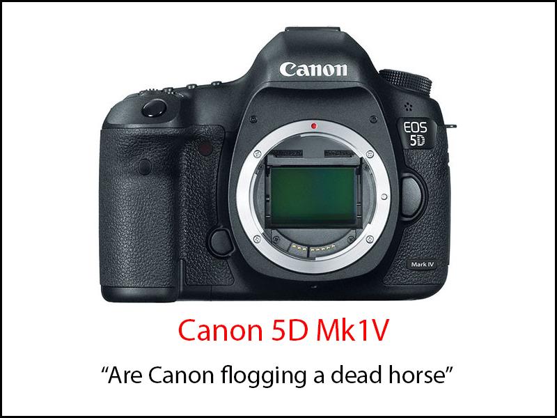 Canon 5D v4