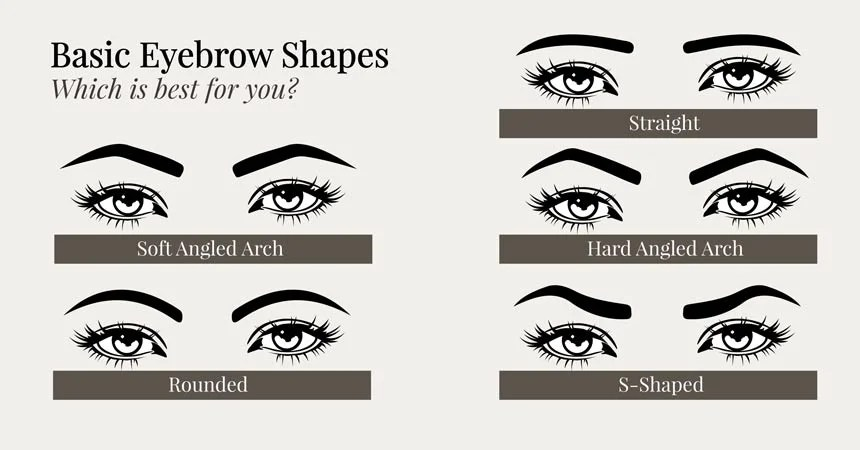 photo Perfect Eyebrow Shape Pictures eyebrow shapes different eyebrow shapes