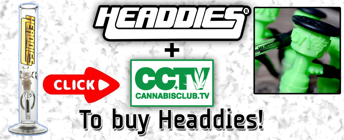 cannabis-club-tv-headdies Home %catagory