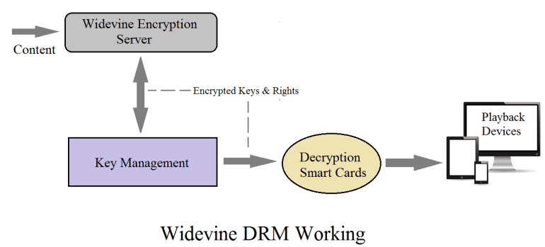 Widevine DRM Technology By Google & Its Working