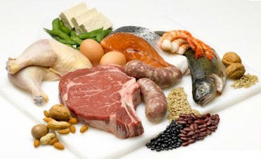 excess protein intake