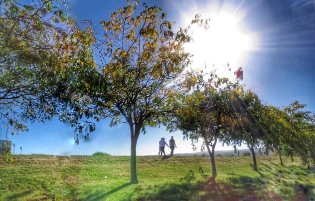 Launceston - Autumn Day